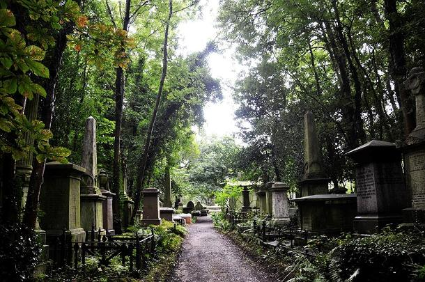 Path in Highgate Cemetery East (c) Lorcan Maguire