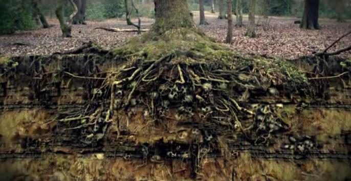 Possibly the most accurate scene in 'The Coven' - a representation of the plague pits beneath Queens Wood.
